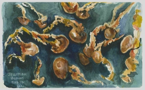 Jellyfish at Vancouver Aquarium (Watercolor)