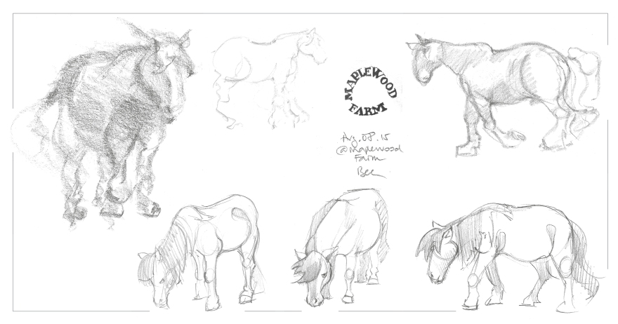 Life studies of horses and ponies at Maplewood Farm, Vancouver BC (Graphite)