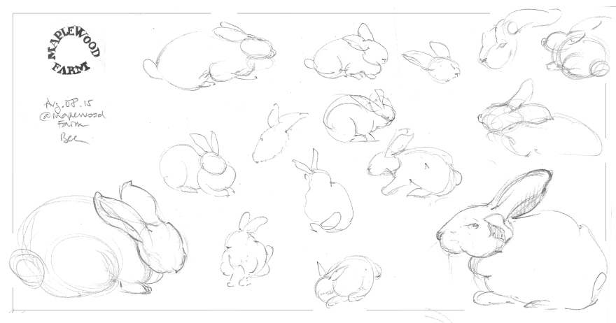 Life studies of cute rabbits at Maplewood Farm, Vancouver, BC (Graphite)