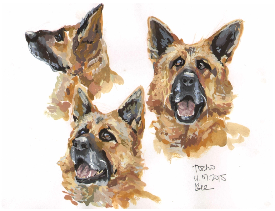 Studies of Tocho (Gouache)
