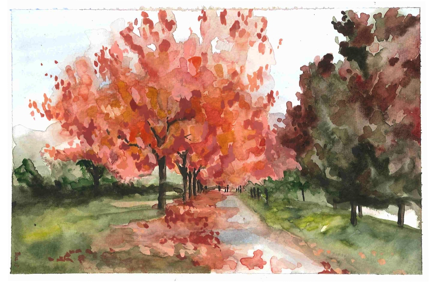 Study of autumn at Stanley Park, Vancouver BC (Watercolor)