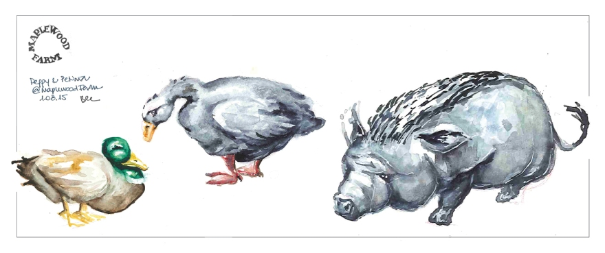 Residents of Maplewood Farm (Watercolor)