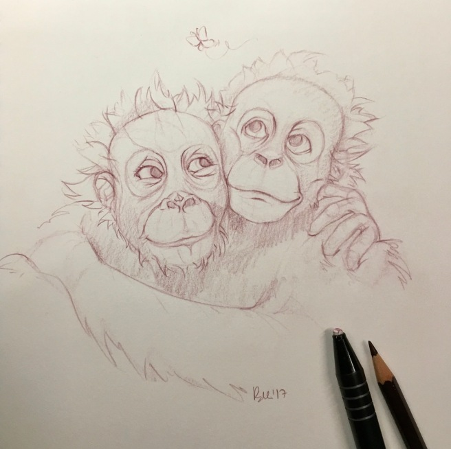 Animal love Series: Bornean orangutans (Tuscan red colour pencil) - Inspired by photograph by Frans Lanting